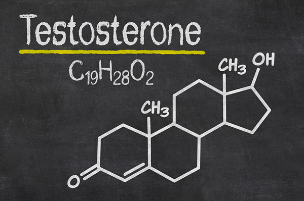 Did you know that? TESTOSTERONE.